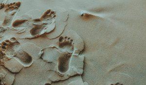 Dobry podolog – czym się charakteryzuje?