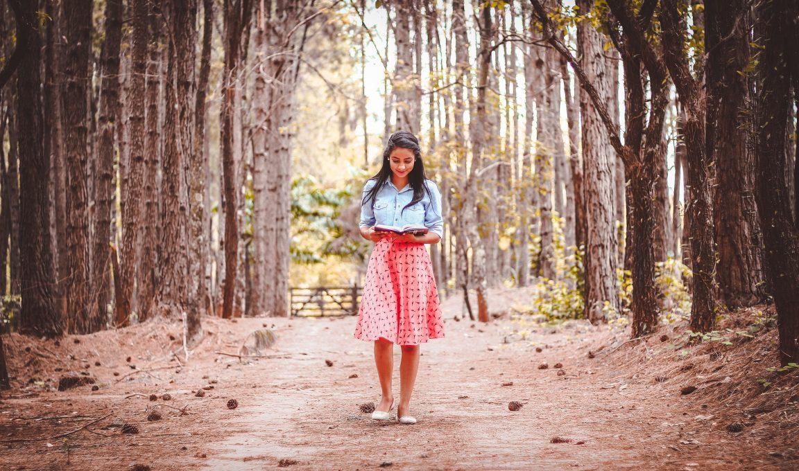 Sukienki ispódnice – znajdź swój butik wToruniu